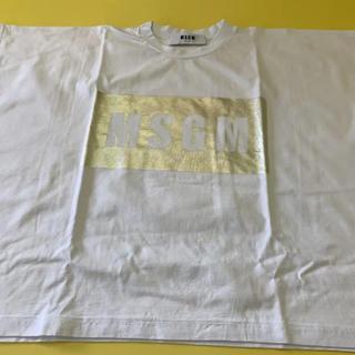 エムエスジイエム(MSGM)のMSGM ポンチョ型Tシャツ S  (Tシャツ(半袖/袖なし))