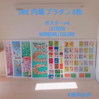 DWE 内職 ポスター カード プラダン 6枚