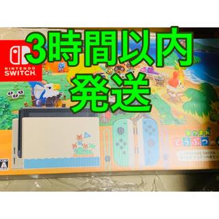 Nintendo Switch - Nintendo Switch 任天堂スイッチ どうぶつの森 どう森 セット