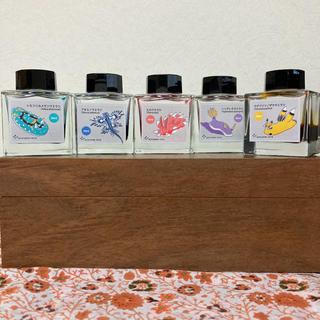 万年筆インク 「ウミウシ」インクボトル5色