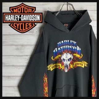 ハーレーダビッドソン(Harley Davidson)の【USA製】ハーレーダビッドソン☆ビッグロゴ入りパーカー 最高デザイン 入手困難(パーカー)