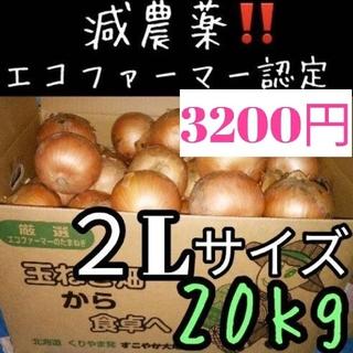 a26 北海道産 減農薬 玉ねぎ 2Lサイズ 20キロ(野菜)