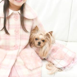 メゾピアノ(mezzo piano)の新品タグ付き 犬服 メゾピアノ チュニックコート S(犬)