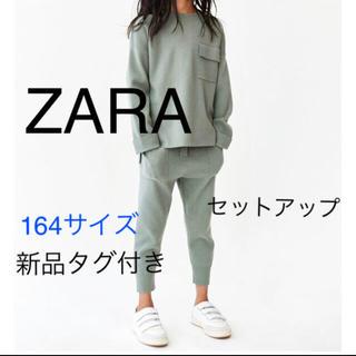 ZARA - 【新品タグ付】ZARA ニットセットアップ