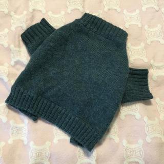 ラルフローレン(Ralph Lauren)のラルフローレン  犬服 セーター サイズS/P(犬)
