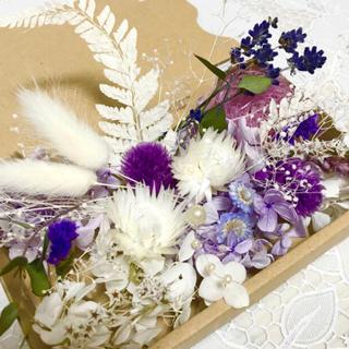 シルバーデージーパープル*ハーバリウム花材ドライフラワー花材セット(プリザーブドフラワー)