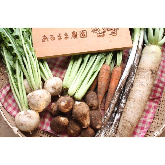【レシピ付】成田産 お野菜詰め合わせ7品Mサイズ(栽培期間中無農薬、無化学肥料) 食品/飲料/酒の食品(野菜)の商品写真