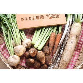 成田産 お野菜詰め合わせ7品Mサイズ(栽培期間中無農薬、無化学肥料)(野菜)