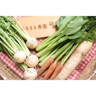 成田産 お野菜詰め合わせ5品Sサイズ(栽培期間中無農薬、無化学肥料)(野菜)