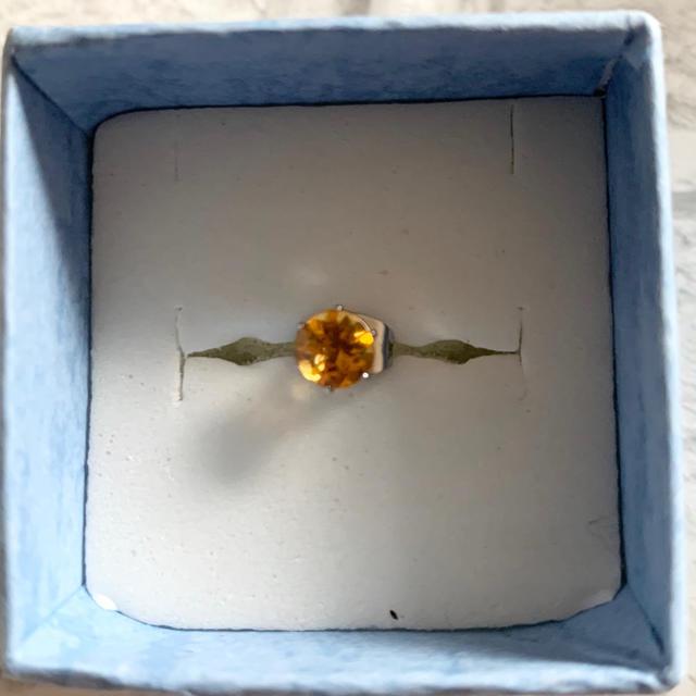 【天然石】シトリン サージカルステンレス 片耳ピアス メンズのアクセサリー(ピアス(片耳用))の商品写真
