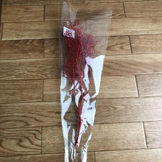 ハーバリウム花材かすみ草(ドライフラワー)