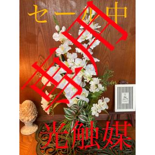 光触媒 人工観葉植物 造花 ウォールグリーン デルフィと胡蝶蘭