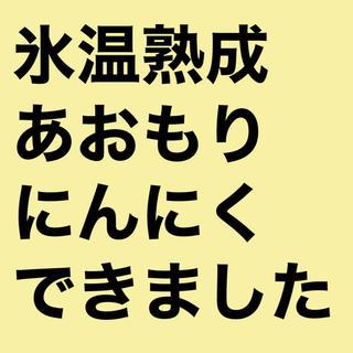 にんにく青森県産(野菜)