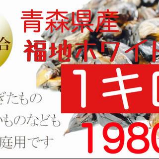 黒にんにく 青森県産福地ホワイト訳ありバラ1キロ (野菜)