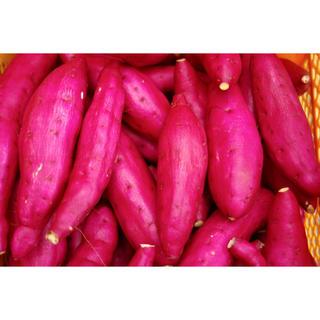 さつまいも 紅あずま 千葉県産 15kg(野菜)