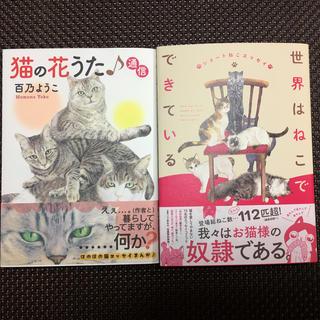 最終値下げ11月3日まで 2冊組 猫の花うた♪通信&世界はねこでできている