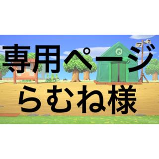 ニンテンドースイッチ(Nintendo Switch)のどうぶつの森 amiibo カード【サラ&ブロッコリー】(カード)