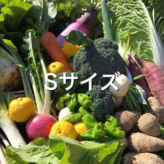 野菜BOX Sサイズ