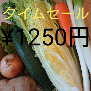 タイムセール¥1250円★野菜詰め合わせセット★(野菜)
