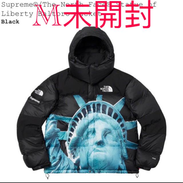Supreme(シュプリーム)のSupreme TNF Statue of Liberty Baltoro m メンズのジャケット/アウター(ダウンジャケット)の商品写真
