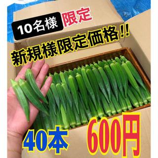 1【新規様限定】宮古島産 おくら オクラ