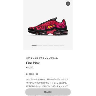 Supreme - 27 Supreme Nike Air Max Plus シュプリーム ナイキ