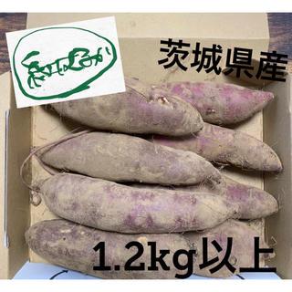 20年産 茨城県 紅はるか さつまいも 1.2kg以上(野菜)