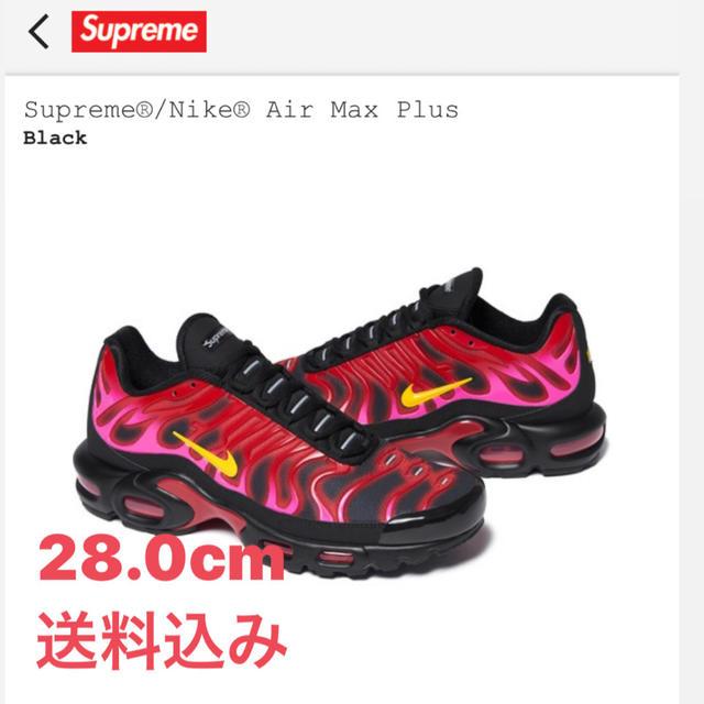 Supreme(シュプリーム)のSupreme / Nike Air Max Plus メンズの靴/シューズ(スニーカー)の商品写真