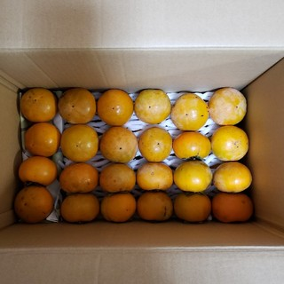 ✨秋の果物✨夏疲れしたお肌に♪富有柿✨無農薬(フルーツ)