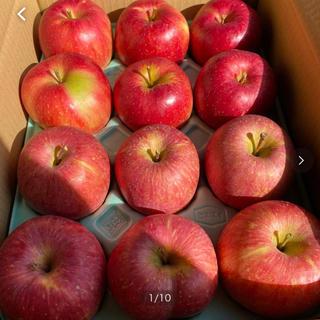 減農薬栽培山形産りんご3kマツコも絶賛 やたか とジョナゴールドコラボ企画(フルーツ)