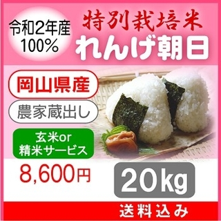 希少米をこの価格で!岡山県_特別栽培米【れんげ朝日】20kg 送料込み