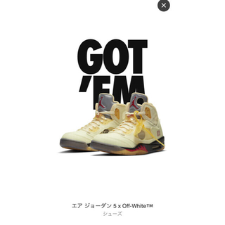 ナイキ(NIKE)のNIKEAIR JORDAN 5 x off-white 29cm(スニーカー)