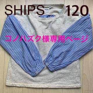 SHIPS - SHIPS 120  薄手トレーナー シャツ カットソー