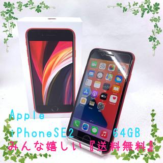 アイフォーン(iPhone)のSIMフリー Apple iPhoneSE2 64GB レッド 95%(スマートフォン本体)