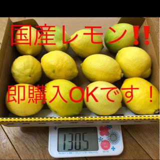 国産 広島レモン グリーンレモン 12個(フルーツ)