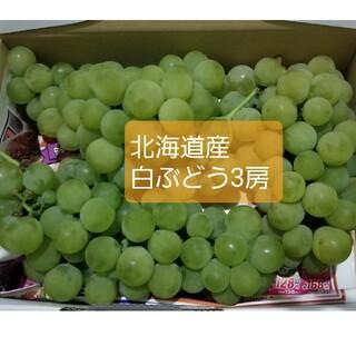 北海道産無農薬本日収穫白ぶどう3房(1キロ以上)(フルーツ)