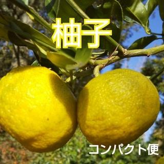 野菜箱詰め【柚子】農薬不使用♪(フルーツ)