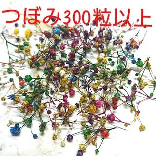 【つぼみ300粒】かすみ草ドライフラワー(ドライフラワー)