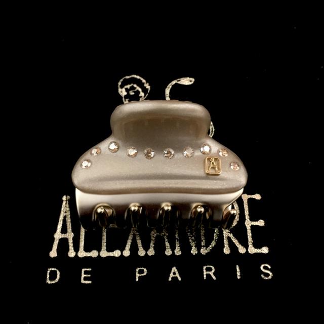 Alexandre de Paris(アレクサンドルドゥパリ)のニャンコ様専用 2点 レディースのヘアアクセサリー(バレッタ/ヘアクリップ)の商品写真