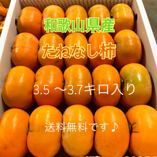 M83 和歌山県産 たねなし柿 ご家庭用 食品/飲料/酒の食品(フルーツ)の商品写真