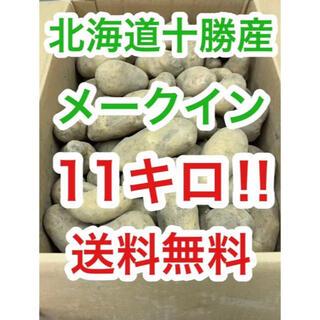北海道十勝産じゃがいも メークイン11kg(10kg+1kg)