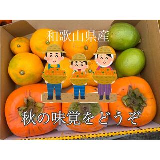 和歌山県産 みかん 柿 レモン 詰め合わせ 低 農薬(フルーツ)