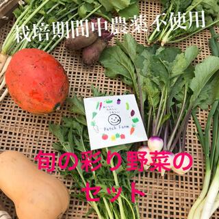 【11月発送】渥美半島から直送!旬彩野菜バスケット(野菜)