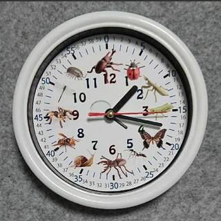 虫 昆虫 分入り 白枠 掛け時計(知育玩具)