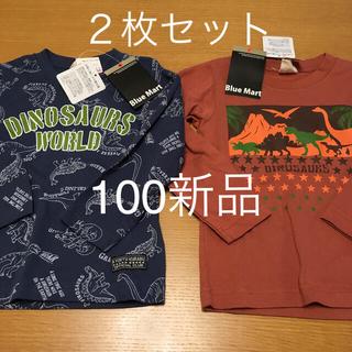 恐竜 長袖Tシャツ 男の子 100新品 ダイナソー トップス ロンT