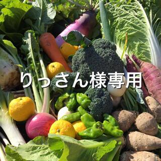 野菜BOX Lサイズ りっさん様専用(野菜)