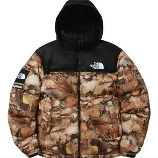 Supreme×The North Face 枯葉