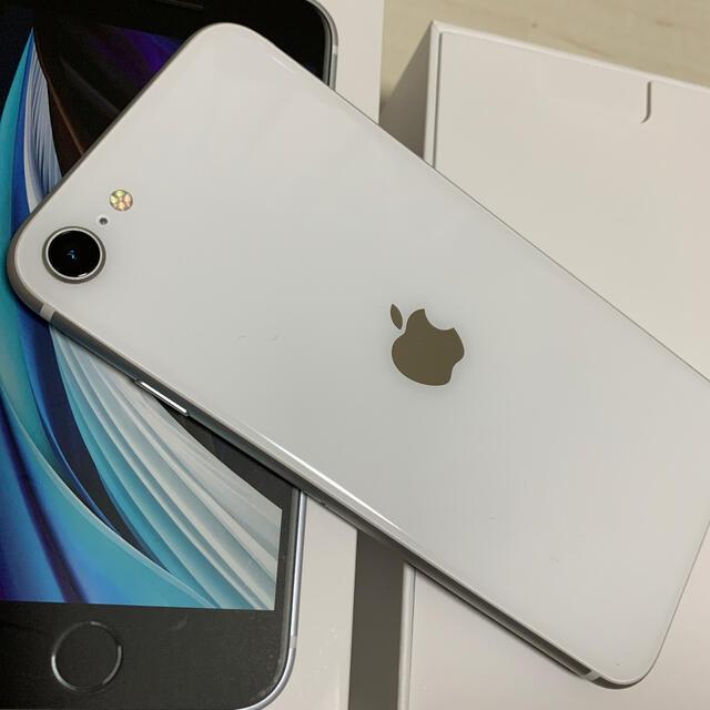 iPhone(アイフォーン)のiphoneSE 第2世代 64GB シルバー simロック解除済 スマホ/家電/カメラのスマートフォン/携帯電話(スマートフォン本体)の商品写真