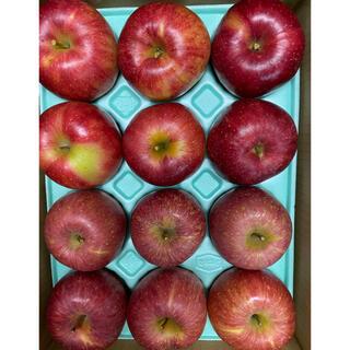 減農薬栽培山形産りんご3kマツコも絶賛 やたか とジョナゴールドコラボ企画 (フルーツ)
