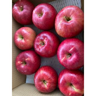 減農薬栽培山形産 りんご酸味好きさんいかが?ジョナゴールド3キロ 箱(フルーツ)